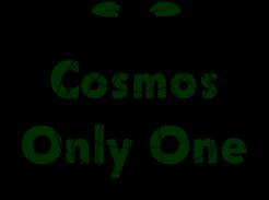 bnr_cosmos